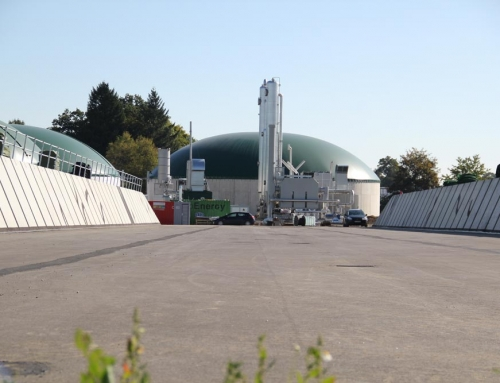 Biogas production plant